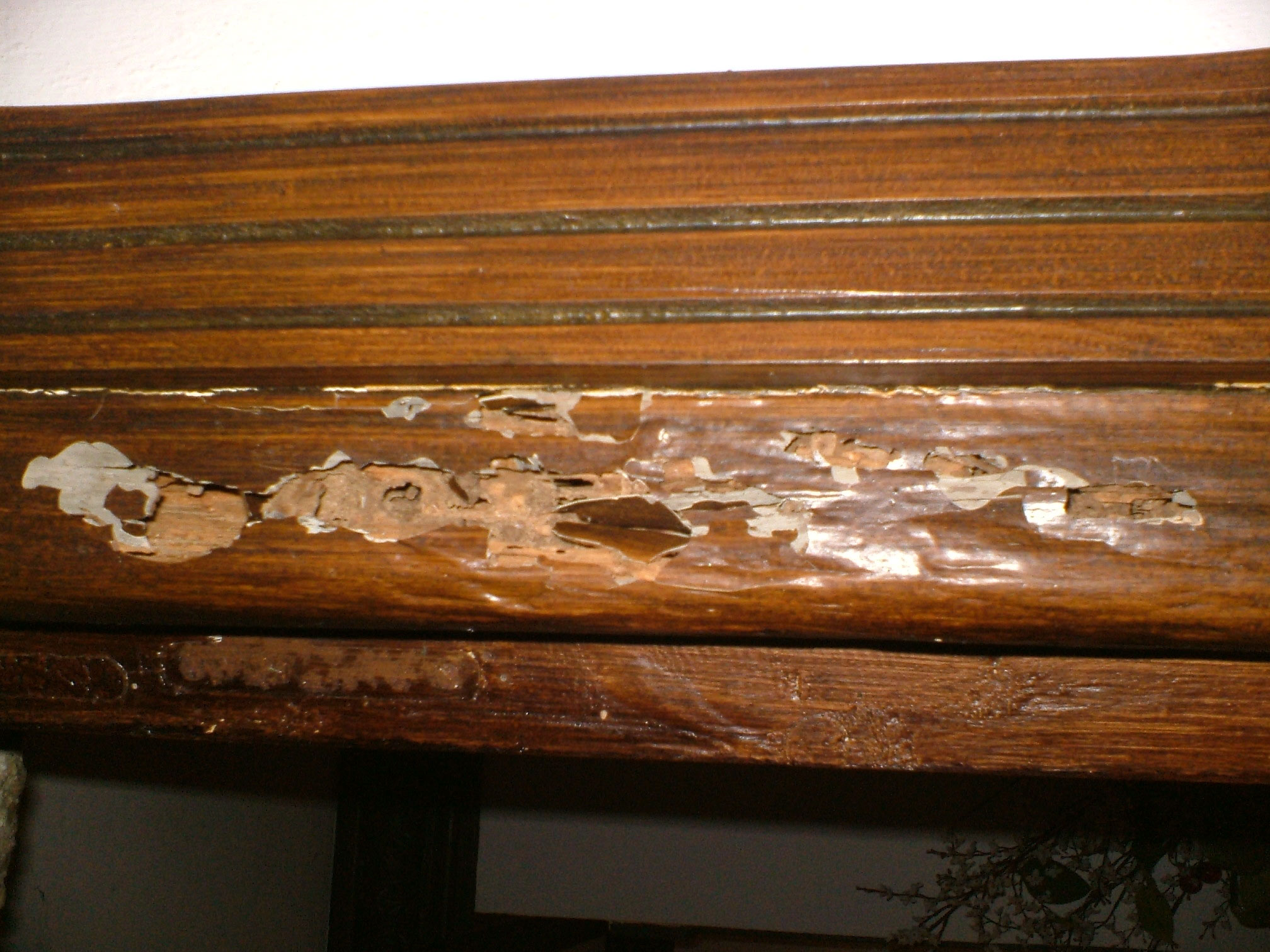 efectos de la termita