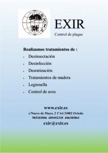 Servicios ofrecidos por EXIR